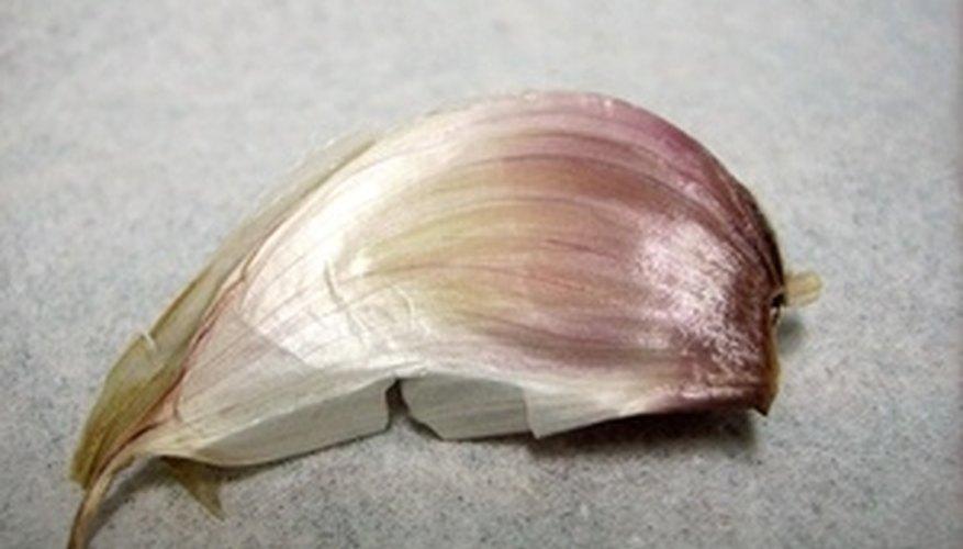 Cut each garlic clove into slices.