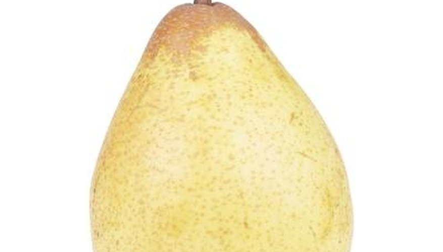 Pears are vulnerable to soft scale attack.
