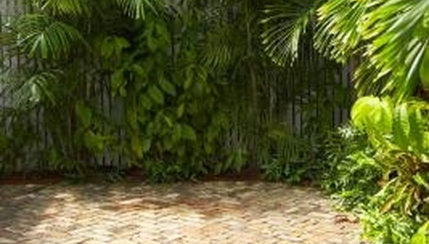 Prevent weeds from growing on brick patios with polymeric sand.