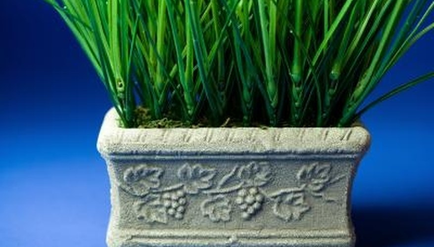 Make your own cement flower pots using decorative concrete molds.