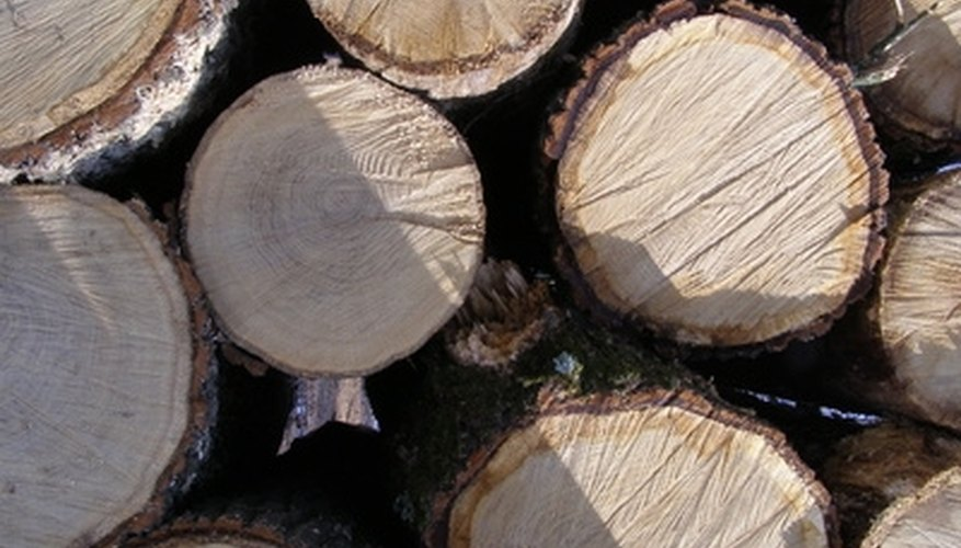 A scaling stick can quickly give a very good estimate of the amount of board feet of lumber in logs like these.