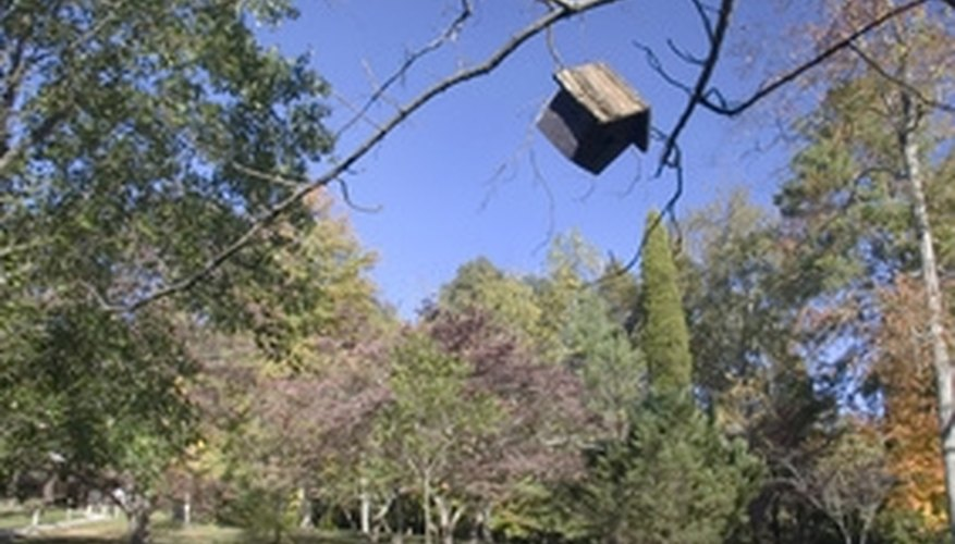 Clean birdhouses to keep them ready for future roosters.