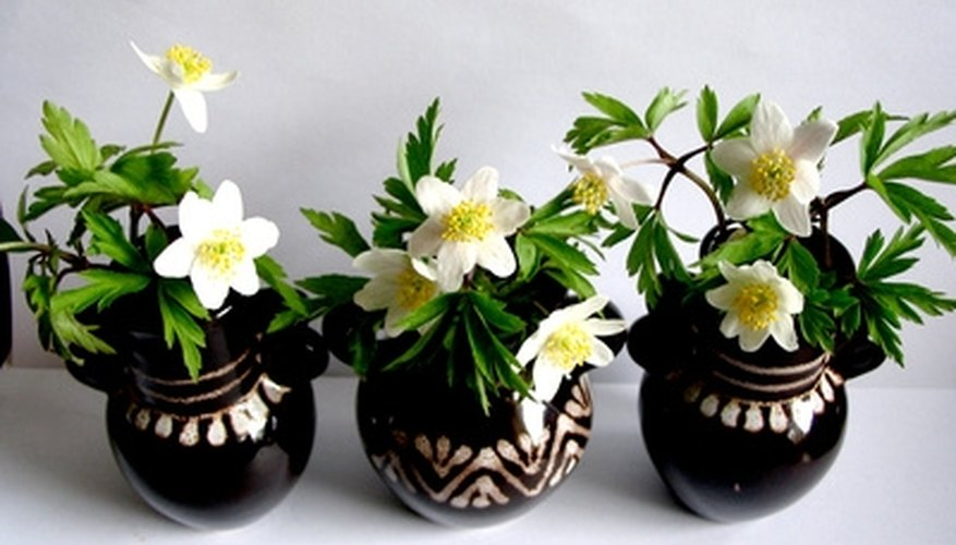 Put things in your vases besides flowers.