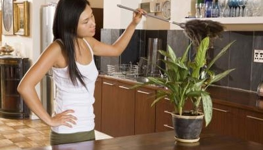 Routine cleaning will help reduce the amount of dust mites in your home.