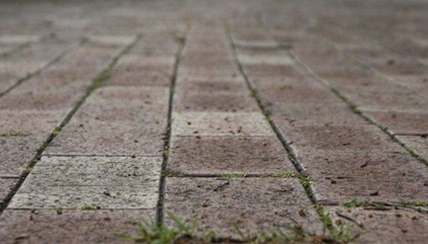 Maintenance Tips for a Brick Paver Patio   Garden Guides
