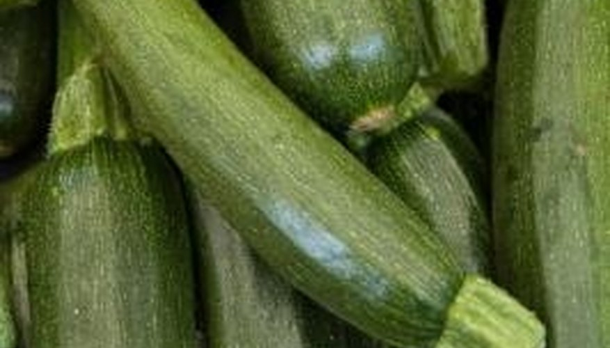 Supply extra nutrients to the plant by placing an organic mulch around the zucchini plants.