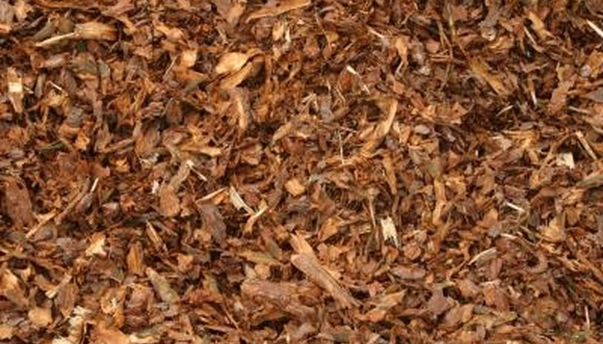 Wood chip mulch could harbor the cause of dots on siding or cars.