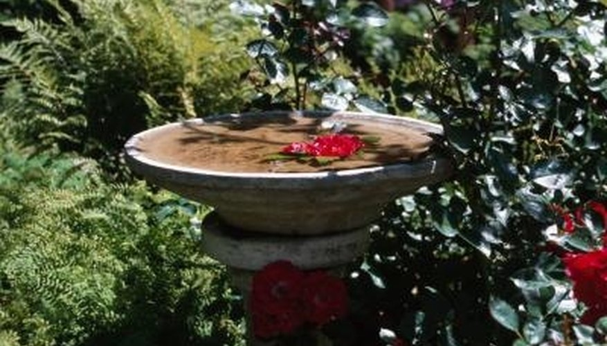 You can install a fountain in a birdbath to make it even more attractive.