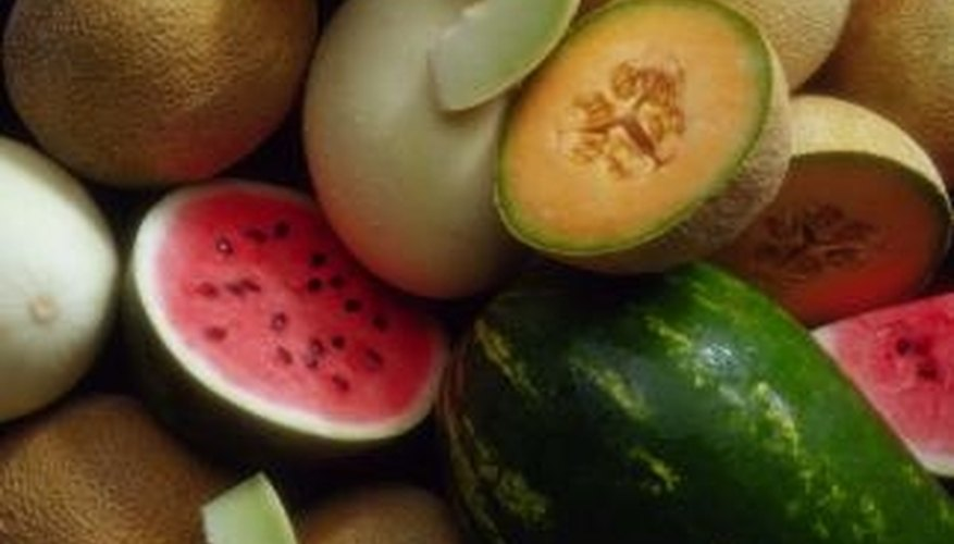 Watermelon and cantaloupe are members of the same family and have similar growing requirements.