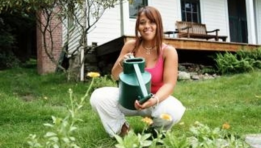 Collecting and storing water for use in the garden can decease the water bill.