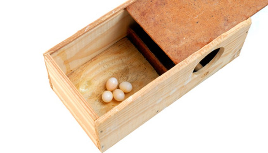 Build a basic wooden box using a saw, hammer and nails.