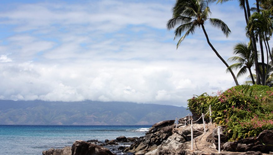 Hawaii Spear Fishing Regulations