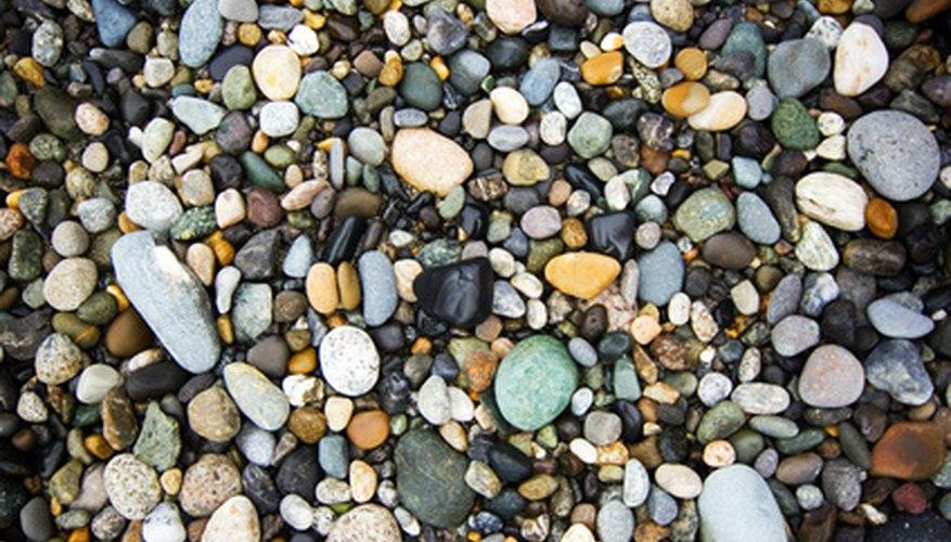 A multitude of rocks.