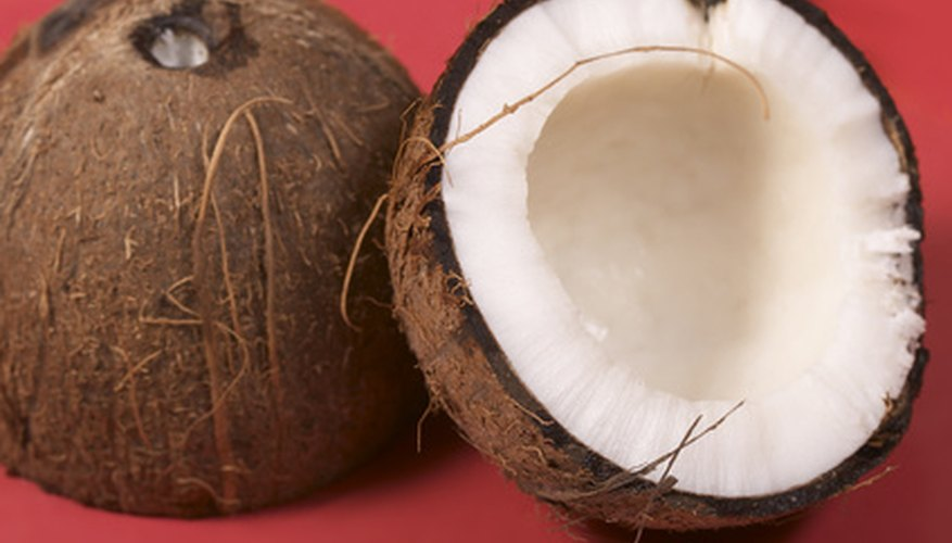 Coconuts are sometimes called the