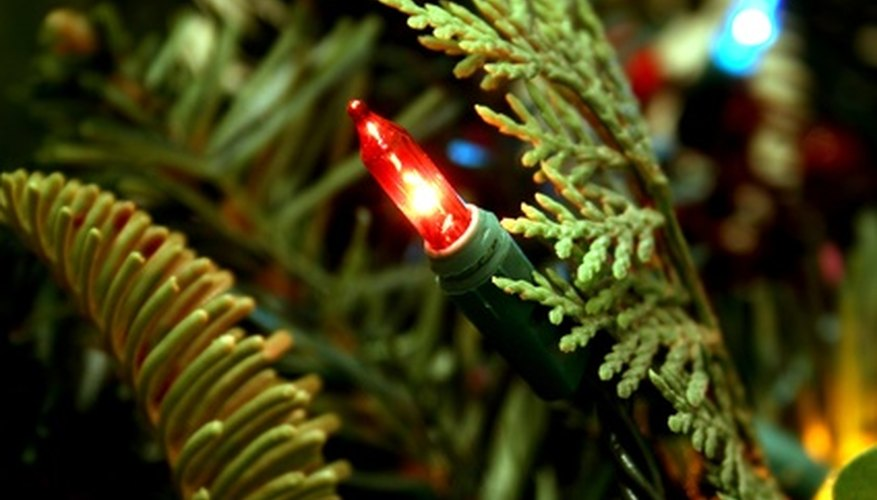 Christmas lights come in a variety of colors.