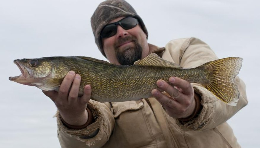 How to Make a Lindy Rig for Walleye Fishing