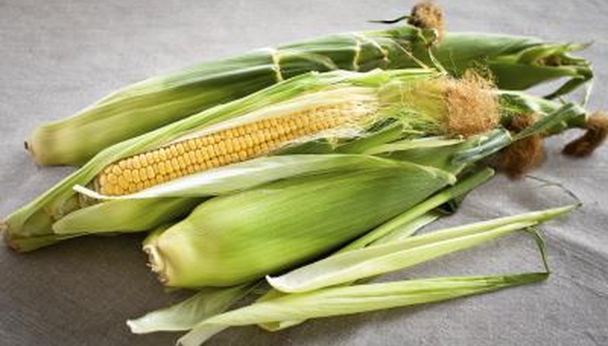 Corn husks are an uncommon but perfectly viable alternative to rolling papers.