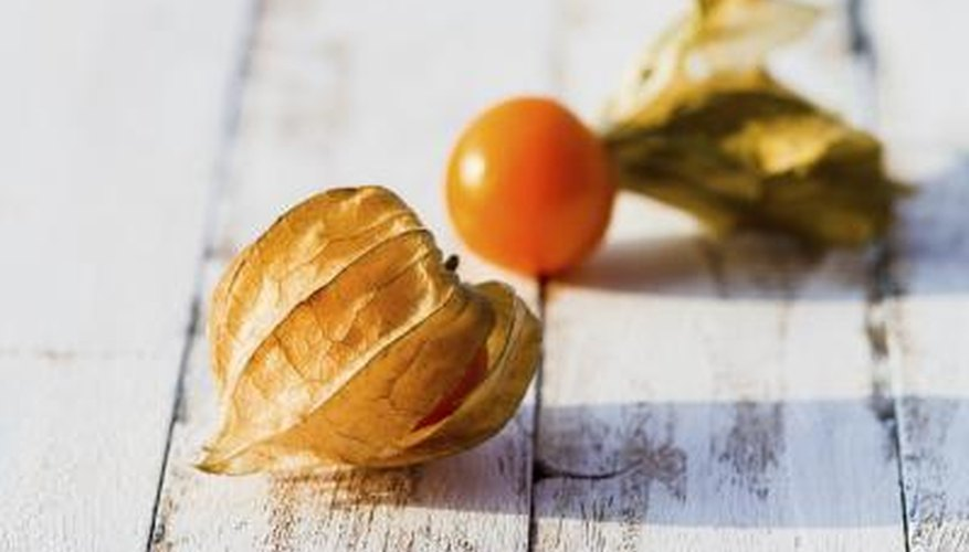 Peel back the husk and eat them fresh, or use in fruit pies, salads and desserts.