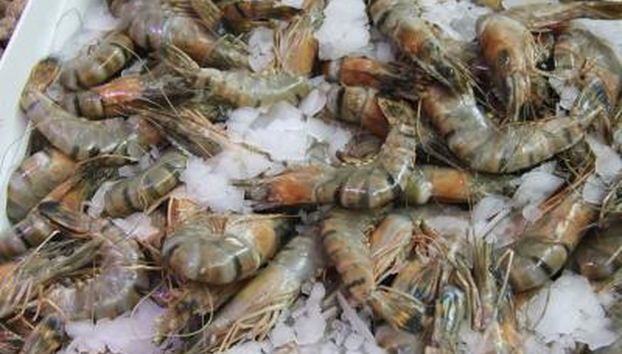 How To Start Freshwater Shrimp Farming Sciencing