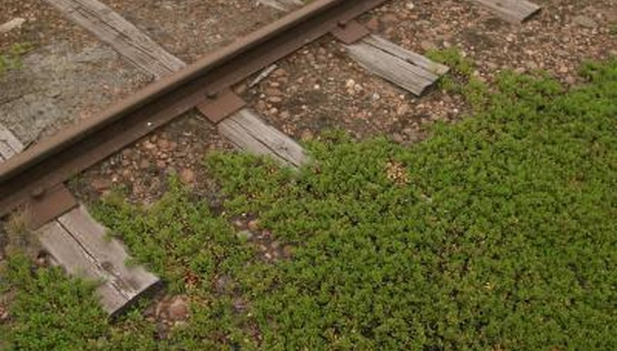 Railroad ties are large timbers used to support and stabilize tracks.