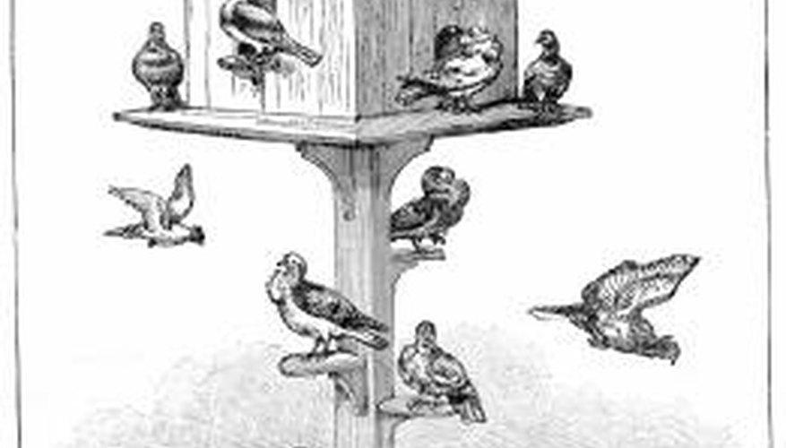 Mounting a birdhouse keeps birds safer.