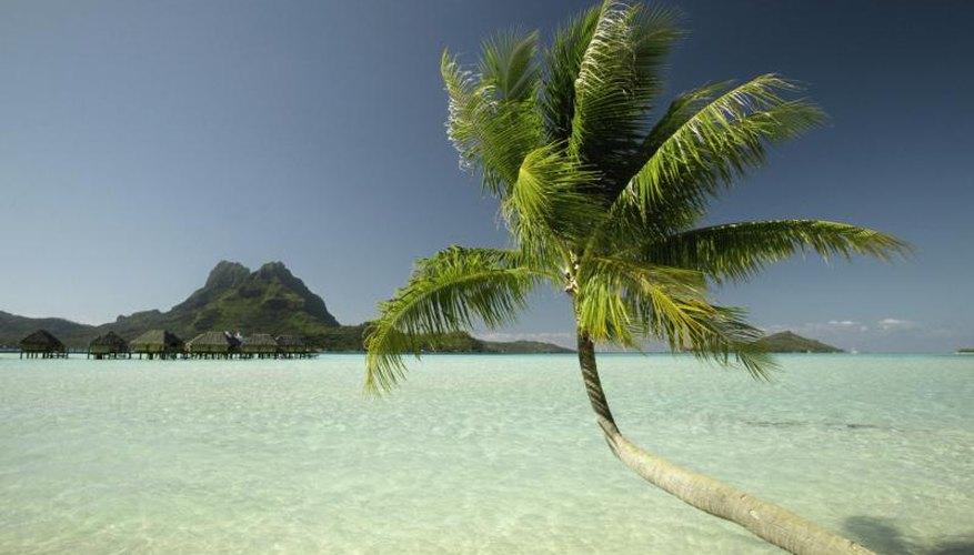 A beach in Bora Bora.