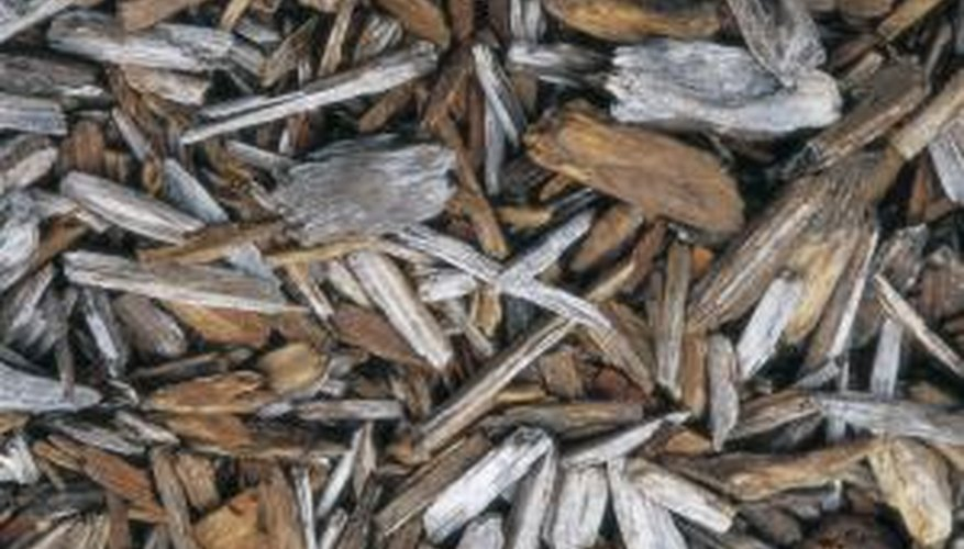 Wood mulch is a popular choice.