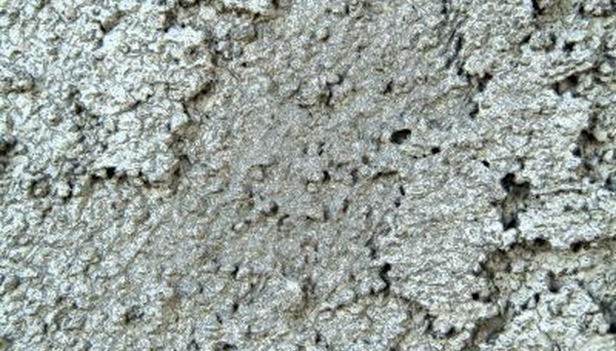 Mold can cause respiratory problems.