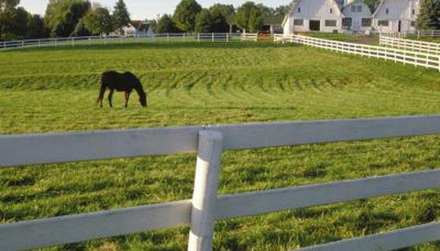 Build a Farm Fence