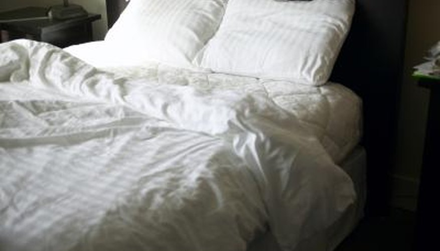 Bed bugs are more active at night than during the day.