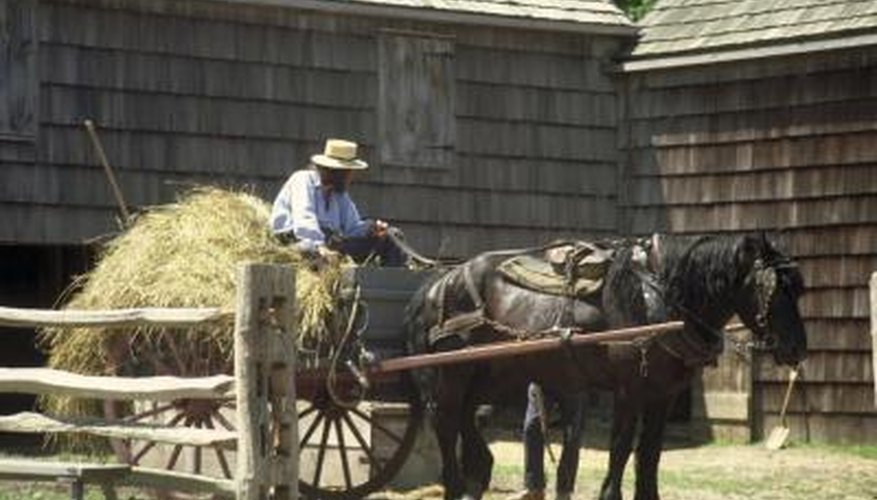 Some of the Amish use gas refrigerators and freezers to keep food fresh without electricity.