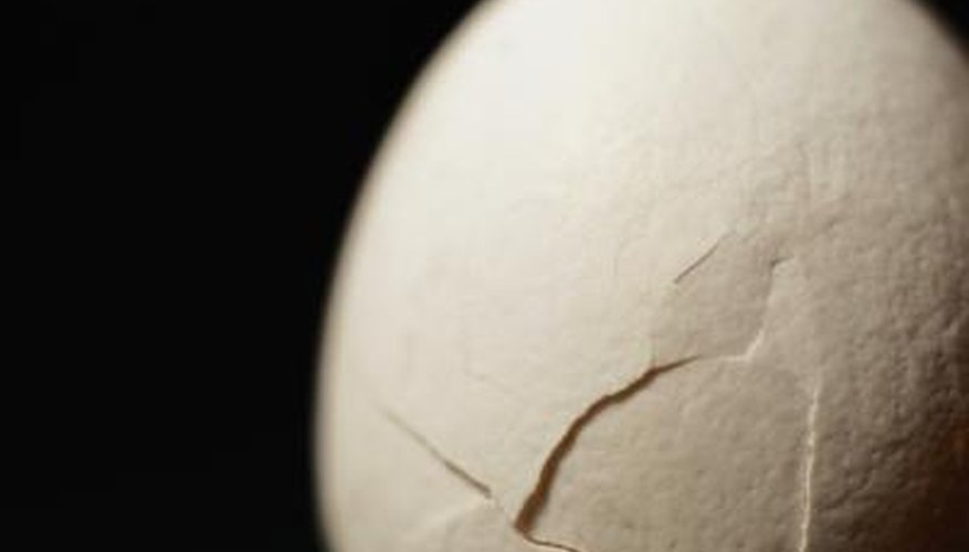 Eggshells are a source of calcium for plants.