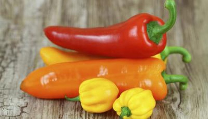 The number of pepper species grows as new hybrids are created.