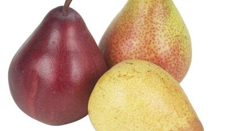Bosc pears are a hardy pear varieity.