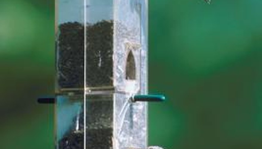 Use a rope pulley system to lower the bird feeder so you can fill it.