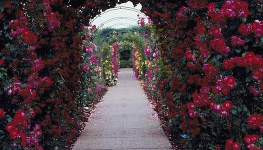 A rose-covered walkway requires a higher ceiling to account for hanging vegetation.