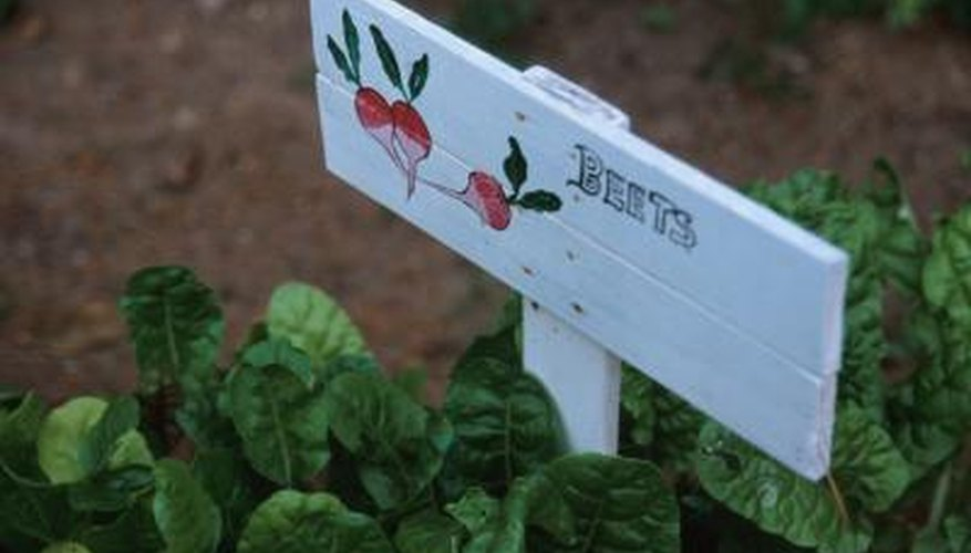 A functional garden fence should keep garden pests outside.