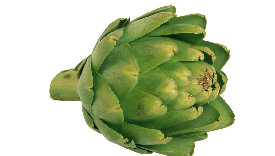 The most common variety of artichoke in the U.S. is Green Globe.