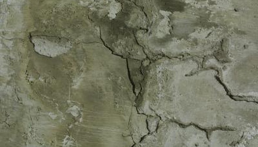 Fill cracks in cement with urethane or polyurethane caulk.