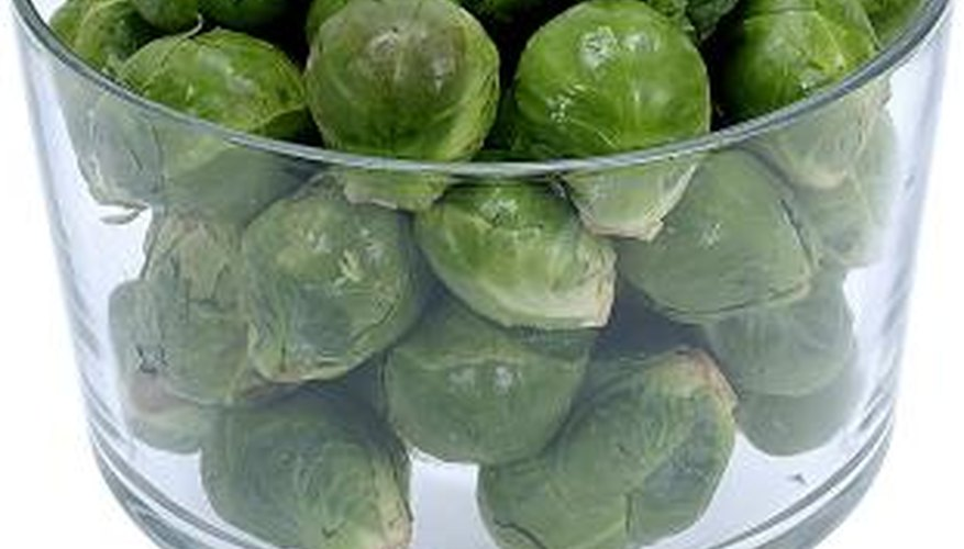 Grow beautiful, healthy Brussels sprouts by eliminating pests early each season.