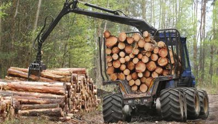A harvester transports logs from a forest.
