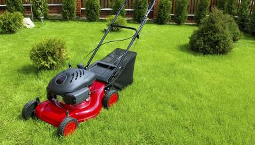 How a Governor on a Briggs & Stratton Engine Works | Garden Guides