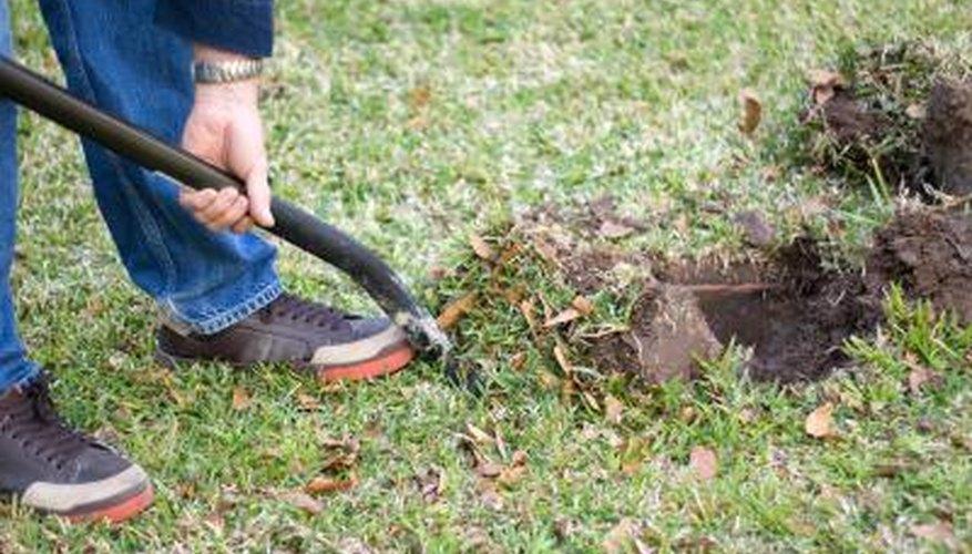 Man digging hole