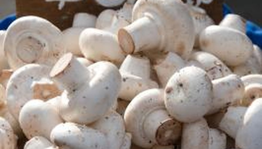 Button mushrooms grow best in a narrow temperature range.
