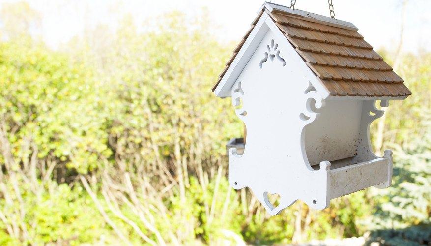 Mount a bird feeder on a wooden bird feeder post in your backyard.