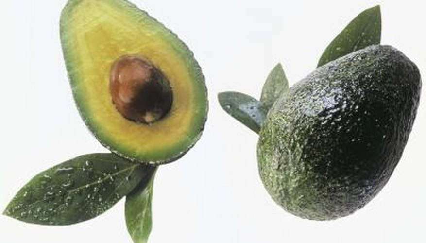 All avocado trees are capable of self-pollinating, but only a few varieties reliably produce fruit as a result of self-pollination.