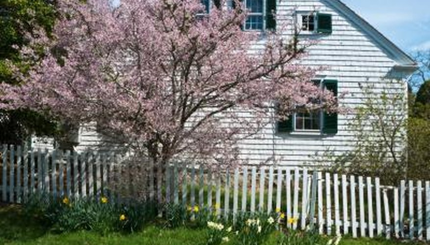 Include spring bloomers and changing fall foliage for extended landscape  appeal. - How To Landscape A Cape Cod House Garden Guides