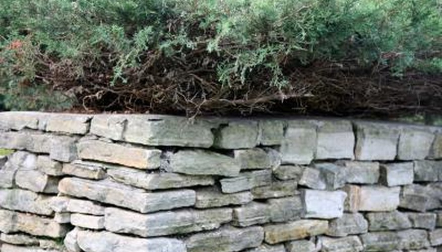 Keep a retaining wall strong with a barrier behind it.