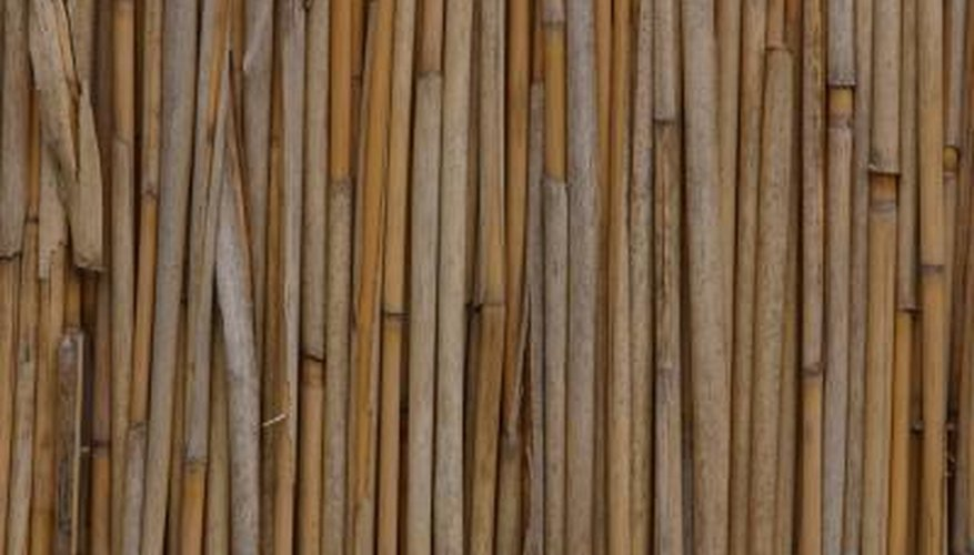 Bamboo is strong and lightweight, making it ideal for building a treehouse.