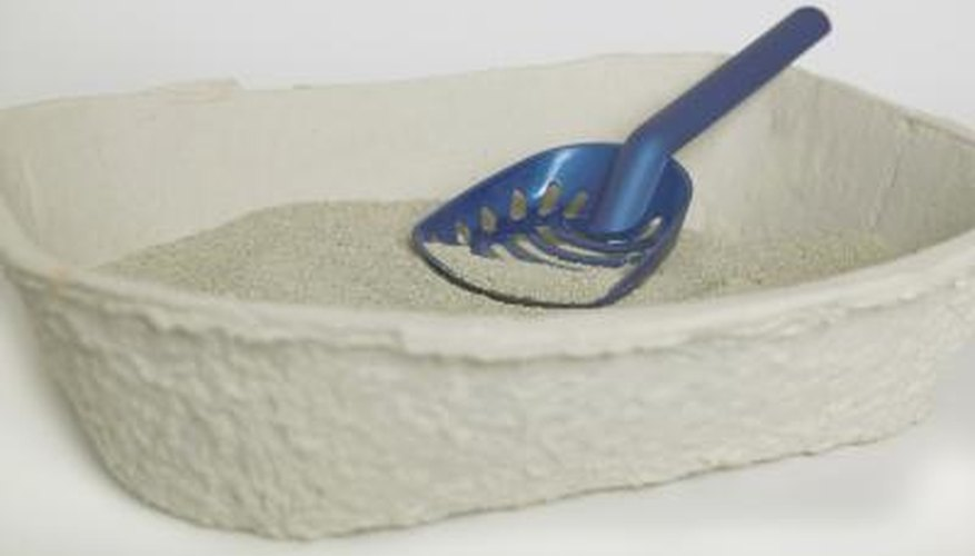 Cat litter made of bentonite clay can be used to seal small leaks in a foundation.